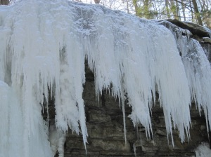 Frozen strands of waterfall.
