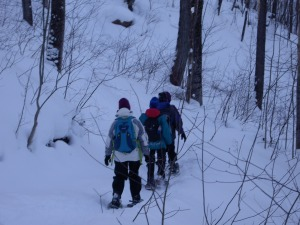 Black Diamond Stretch (yes Black Diamond Snow Shoe Paths)