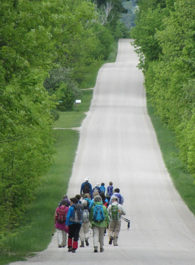 The long and winding road, that leads to..... more Bruce Trail!