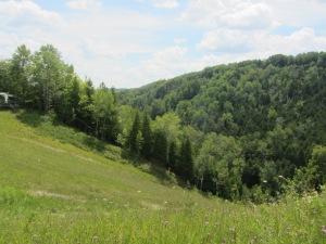 Ski slopes in summer